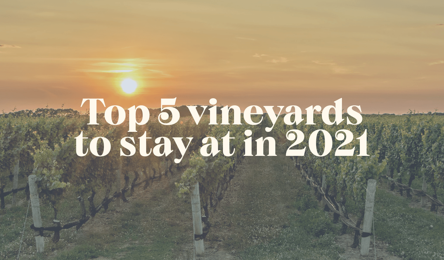 The top 5 vineyards to stay at this year