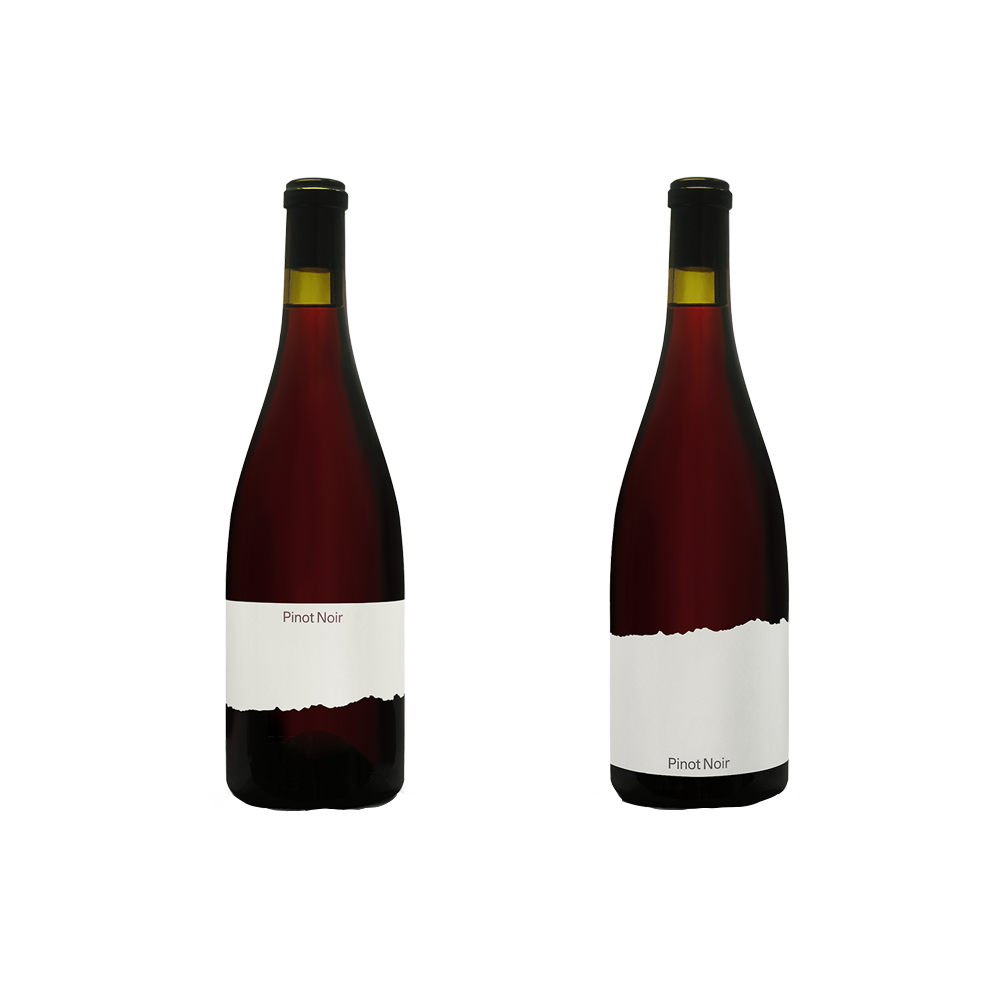 Pinot Noir, Two Ways, Tillingham