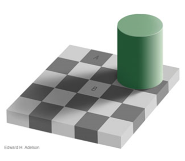 Edward H. Adelson, 1995: Checkershadow Illusion