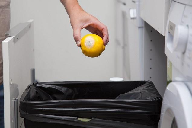 putting lemon on trash bins
