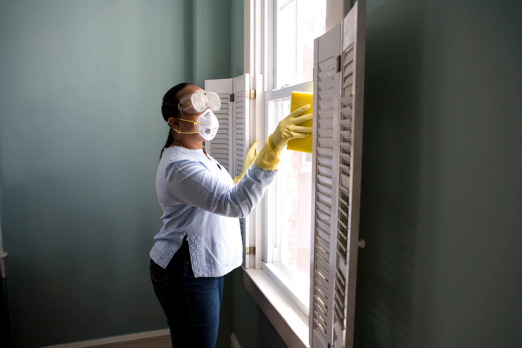 lady cleaning the windows from the inside using a sponge