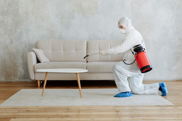 pest control expert cleaning the living room