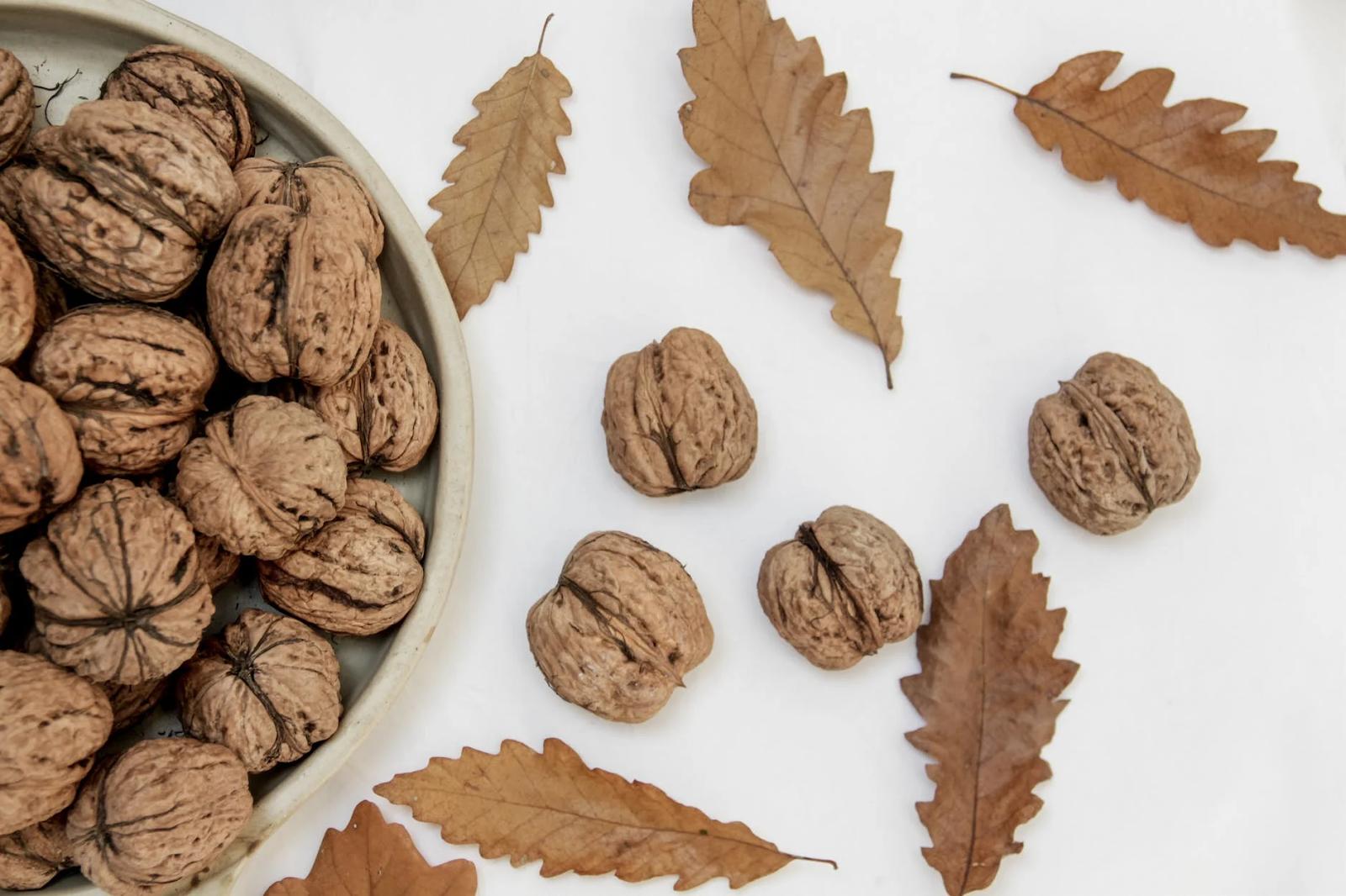 walnuts flatlay