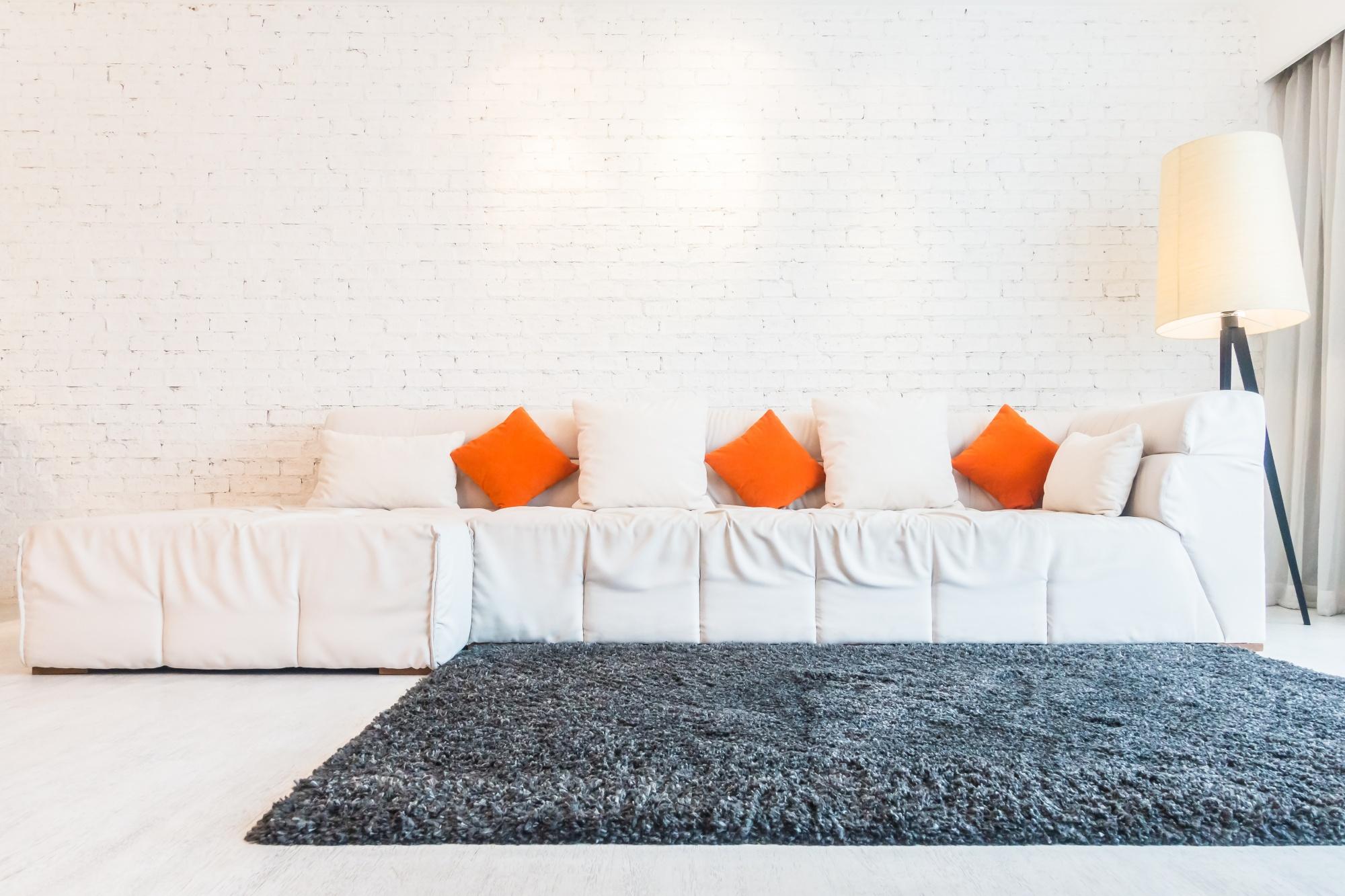 modern living room with carpet