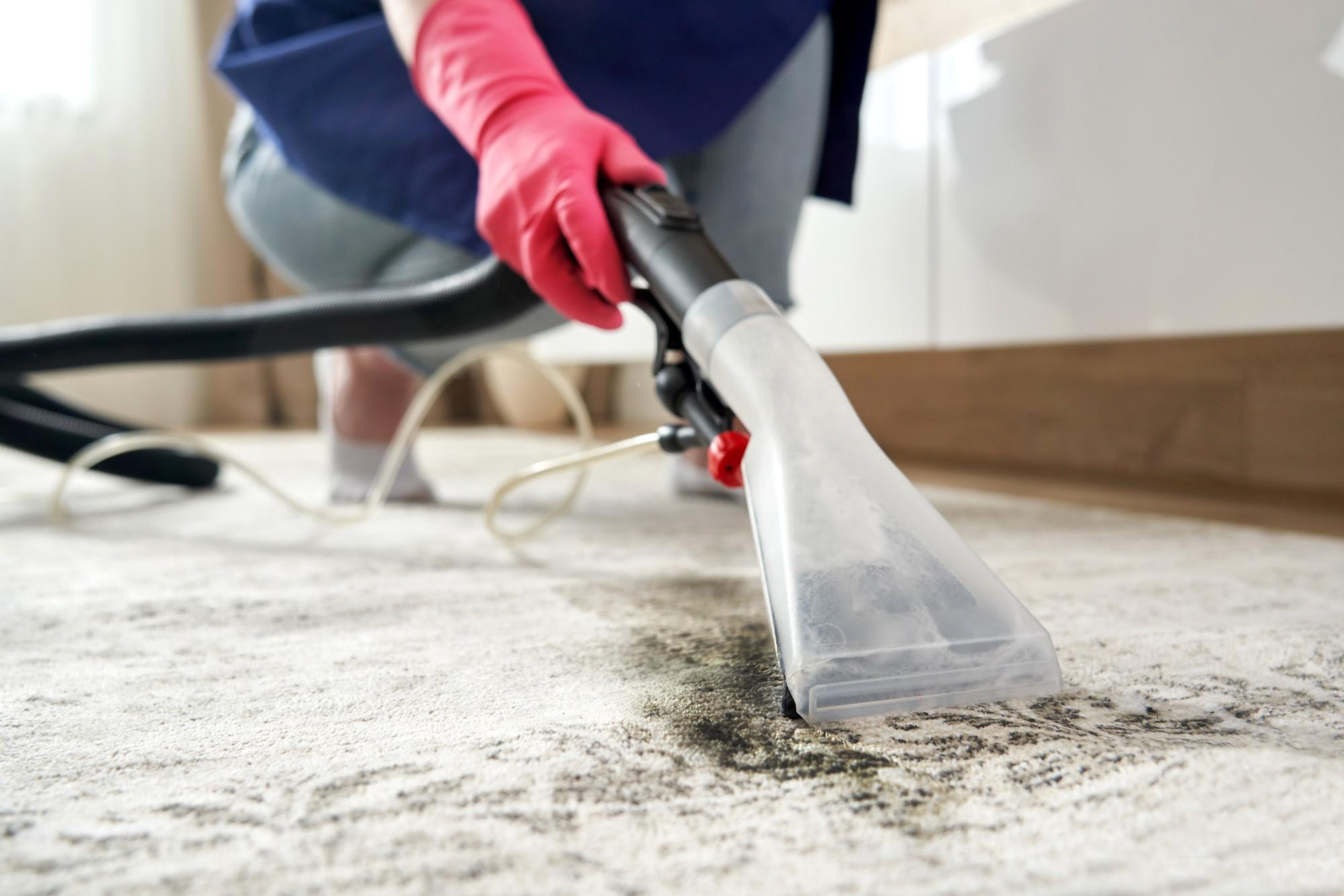 Person using wet vacuum to clean carpet