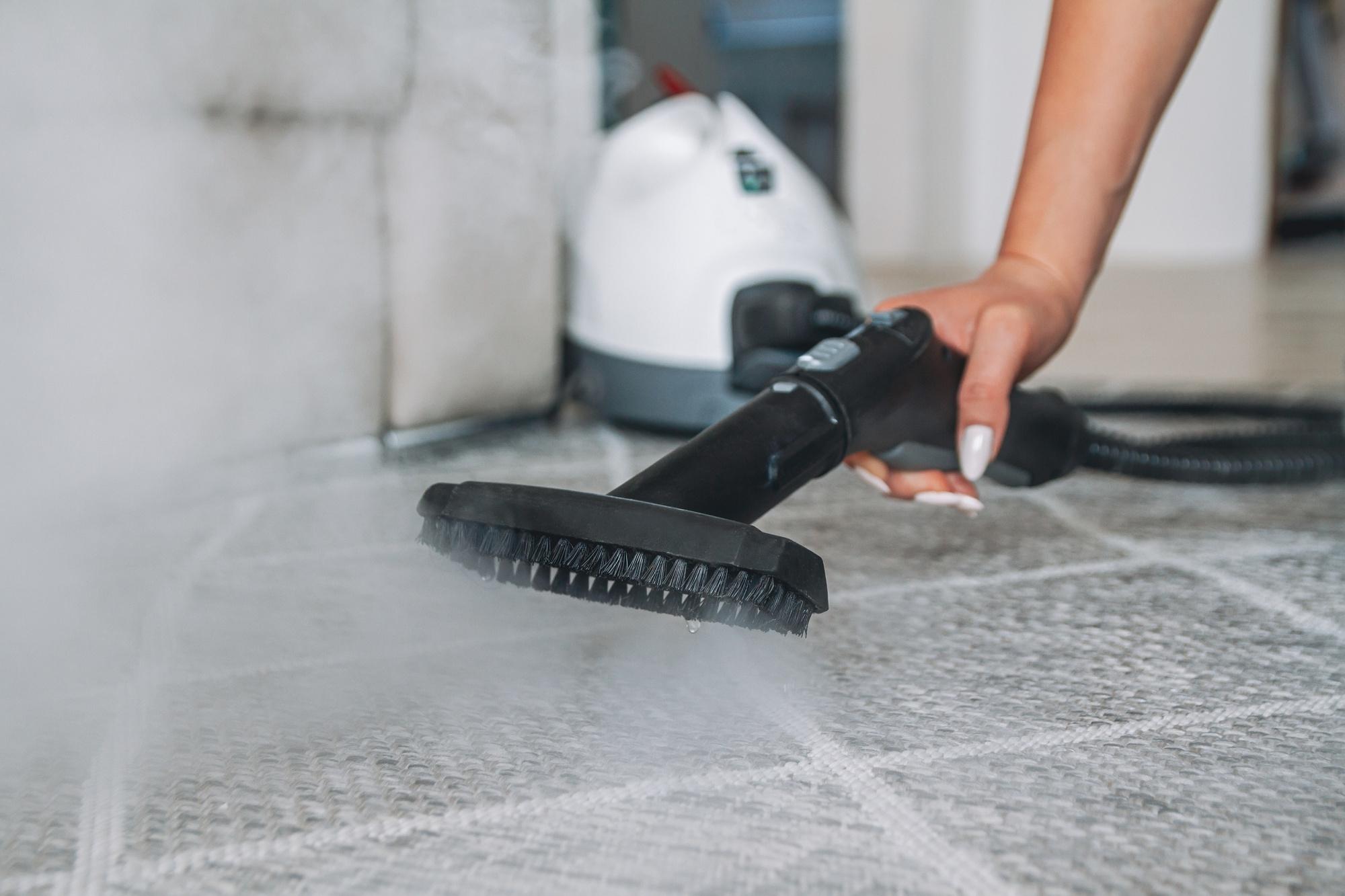 Steam cleaner on rug