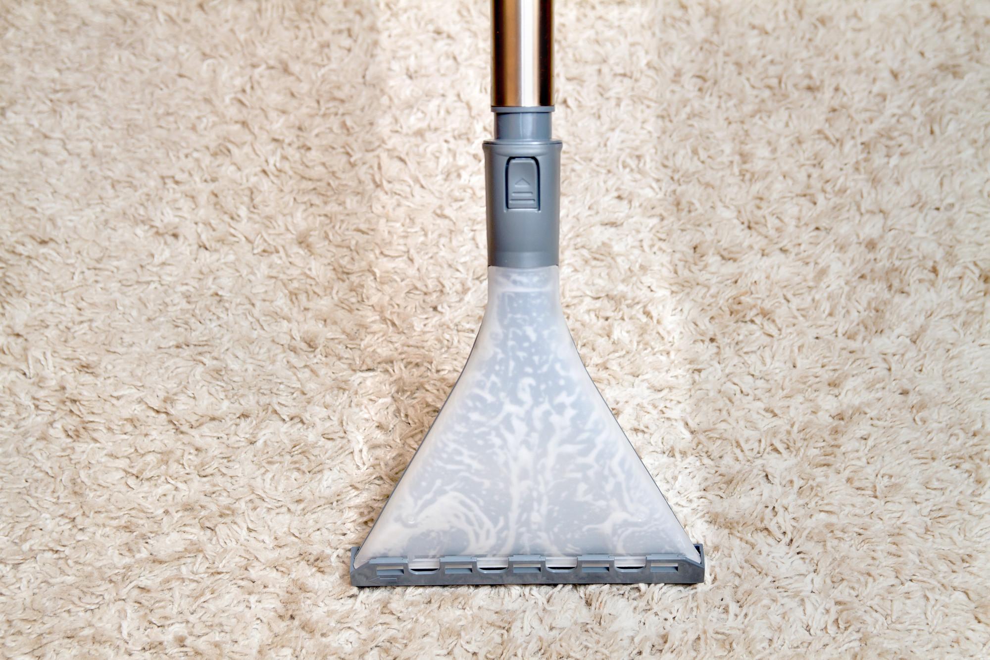 Wet vacuum on wool rug