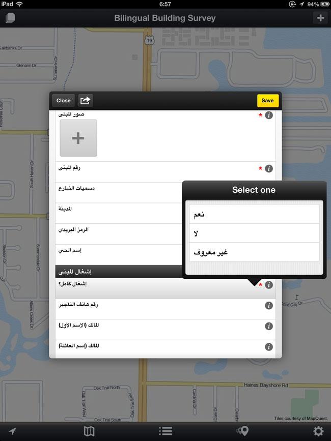 Choices In Arabic