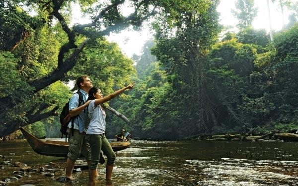 Taman Negara Best Seller Deal