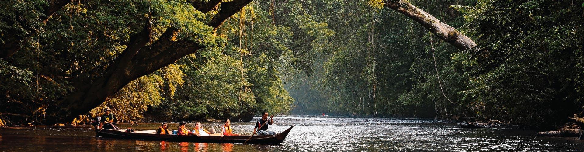 Taman Negara Package @ Mutiara Resort