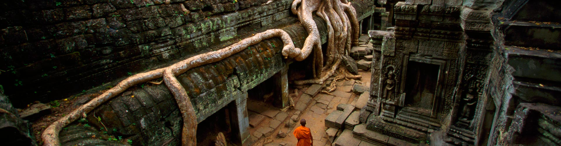 Siem Reap Free And Easy
