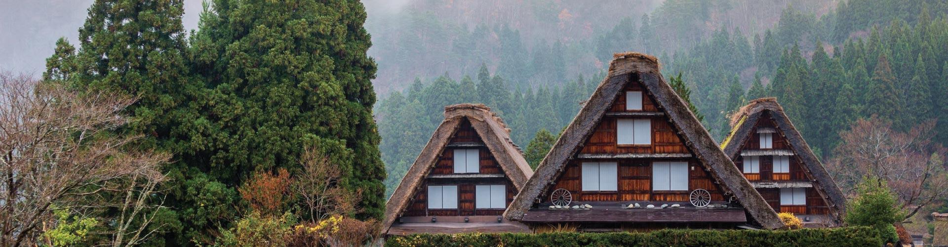 Tokyo +  Heritage Takayama & Shirakawa-go