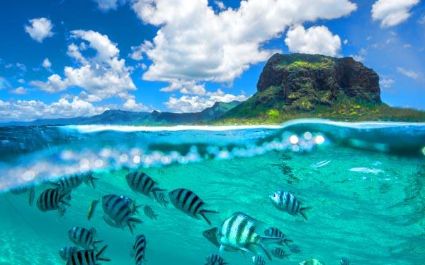 Indian Ocean Cruises