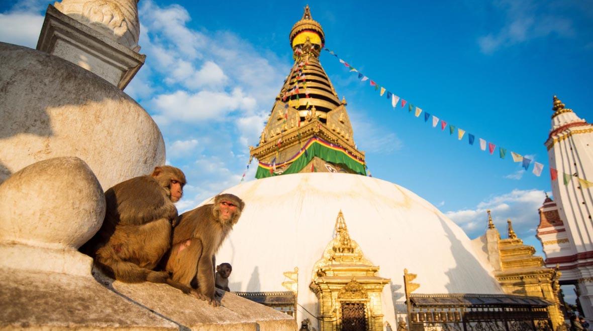 Swoyambhunath Stupa (Monkey Temple)
