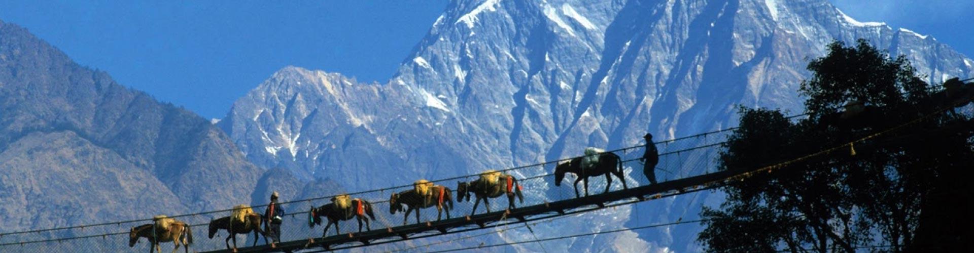 Experience Nepal Tour - Trekking