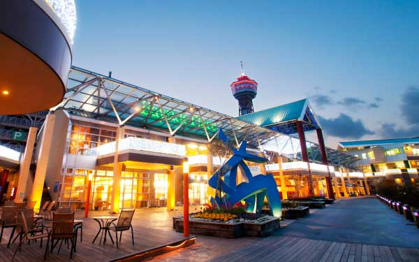 Amazing Kyushu + Dolphins Explorer Cruise Tour