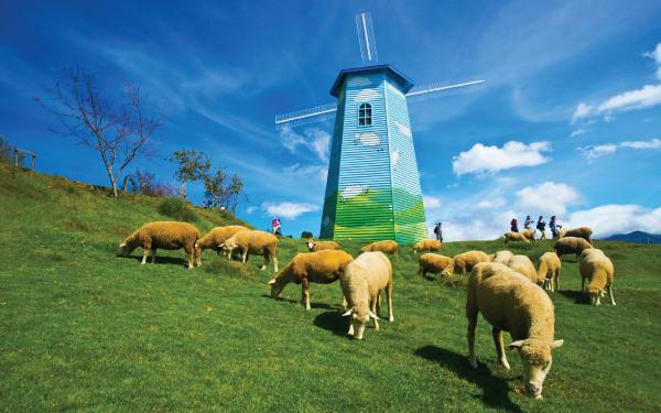 Scenic Western Taiwan + Qingjing Farm