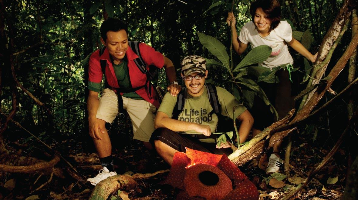 Santubong Eco System