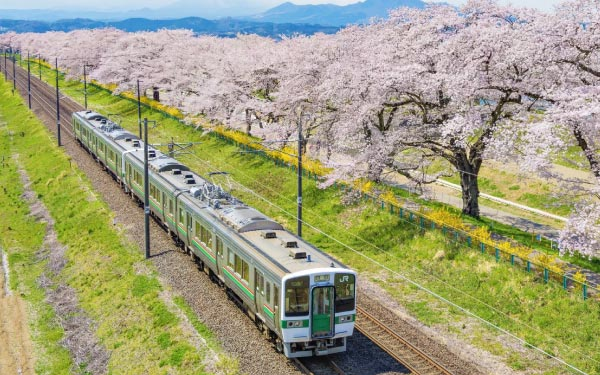 Hassle-free Osaka Apartment Rail Tour