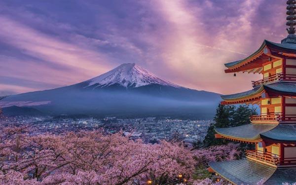 Spectacular Tokyo & Mount Fuji