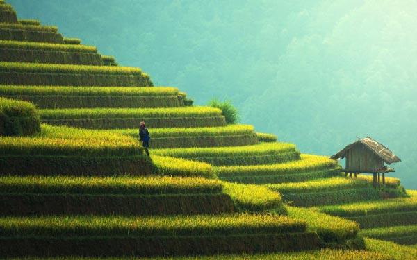 Hanoi & Sa Pa Valley
