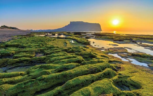 Romantic Jeju Island