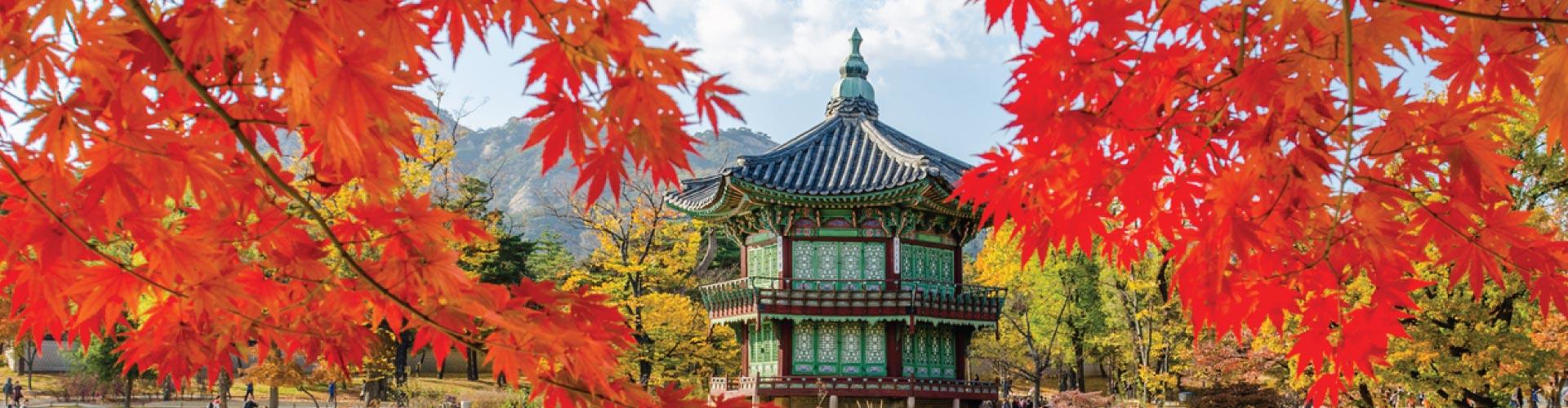 Sparkling Seoul + Romantic Jeju Island
