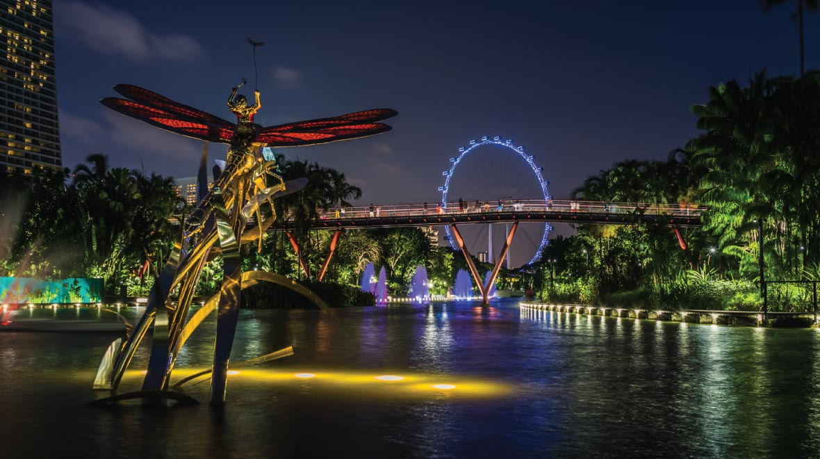Garden By The Bay, Dragonfly Lake