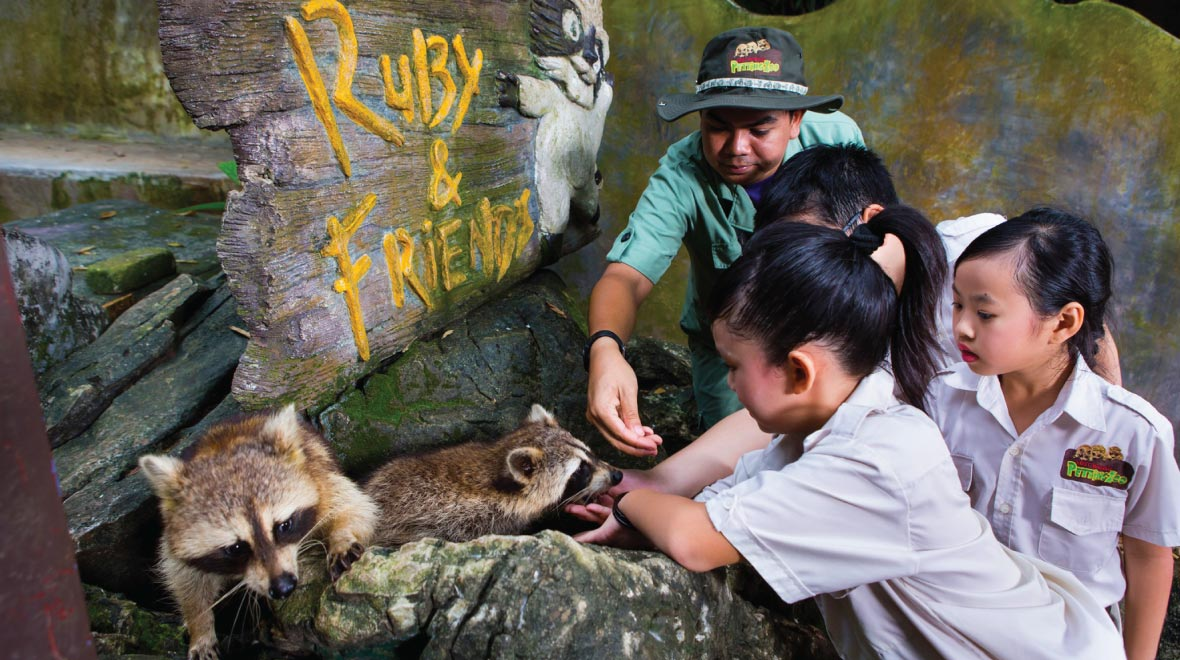 Lost World Petting Zoo
