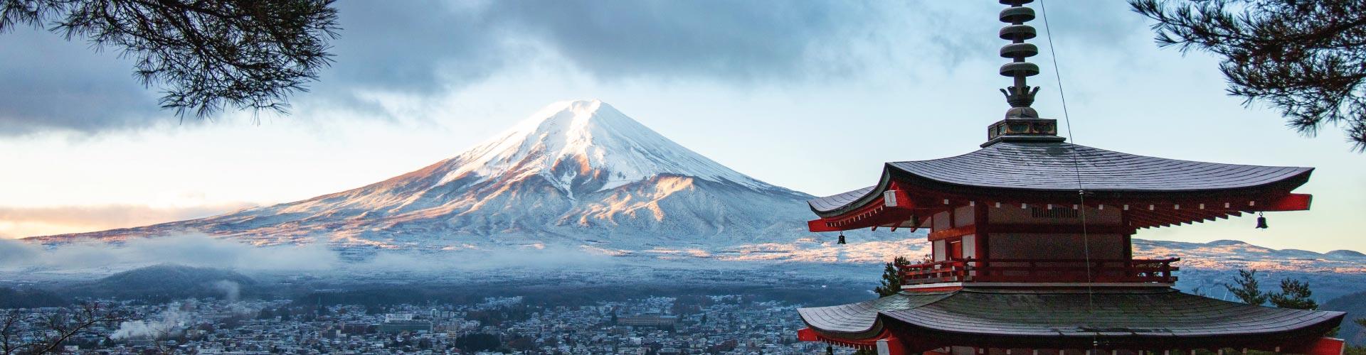 Tokyo & Mt Fuji Pick & Match Tour