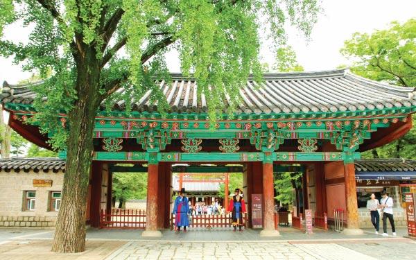 Seoul & Jeonju (Every Thu)