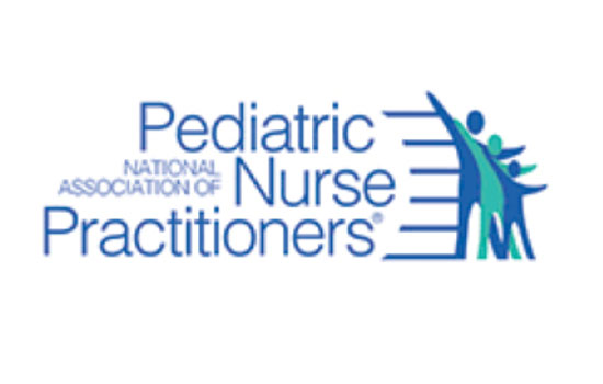 Professor, students recognized by National Association of Pediatric Nurse Practitioners