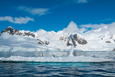 Be Inspired - Explore Antarctica