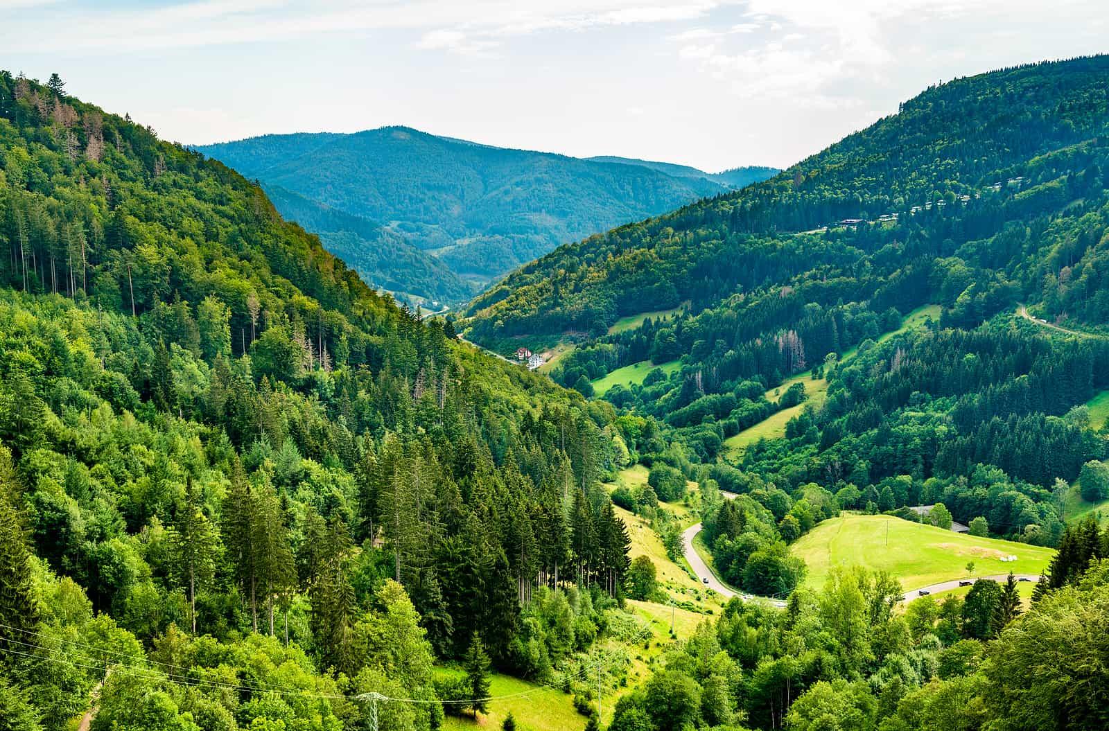 15 Day Romantic Rhine & Moselle