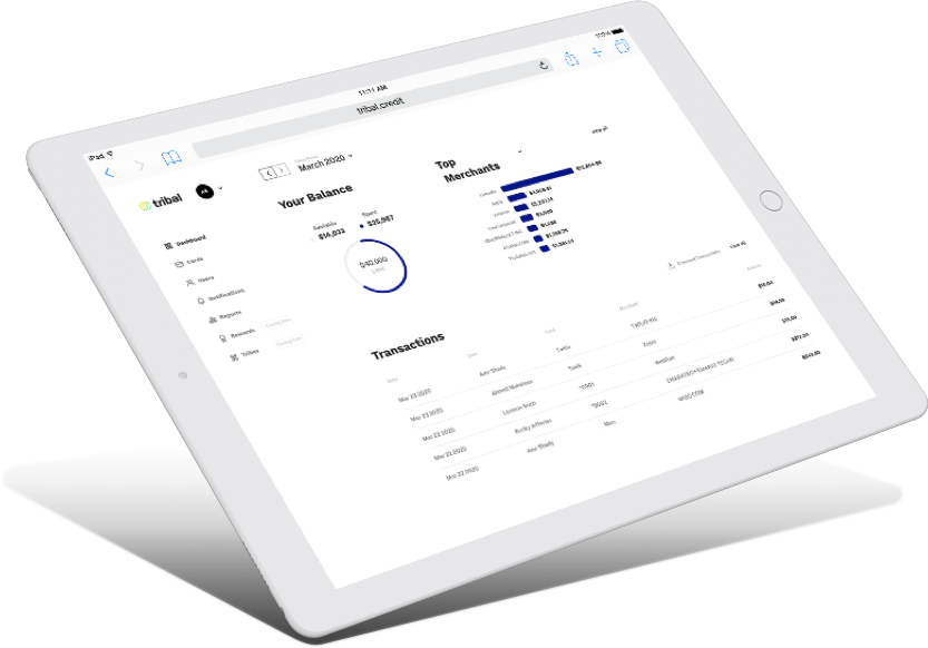 Tribal Credit Dashboard on tablet