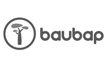 baubap logo