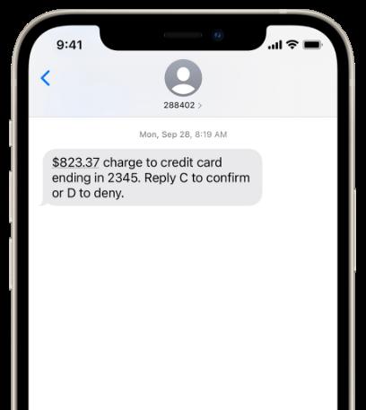 verify transaction