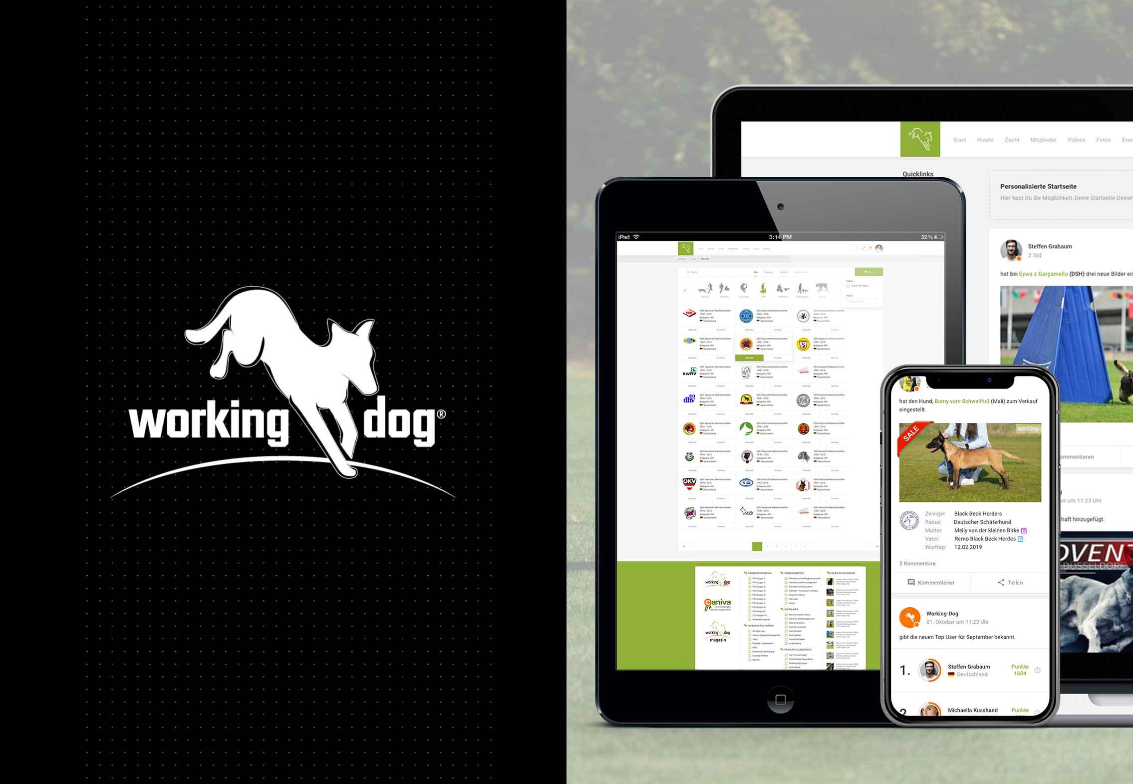 working-dog