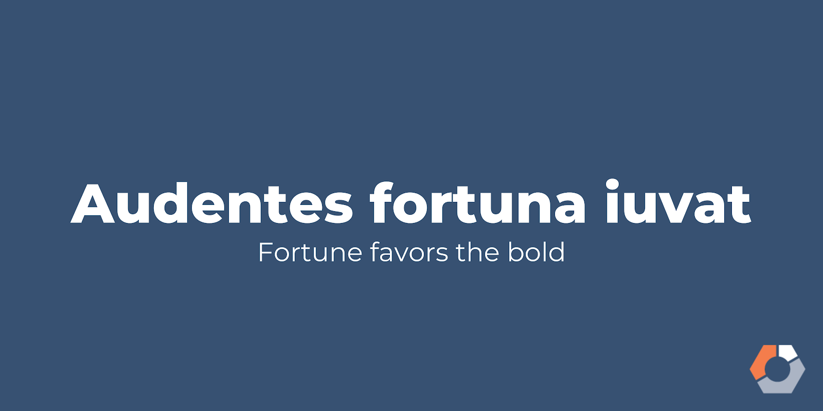 """""""Audentes fortuna iuvat"""" translates to """"fortune favors the bold."""""""