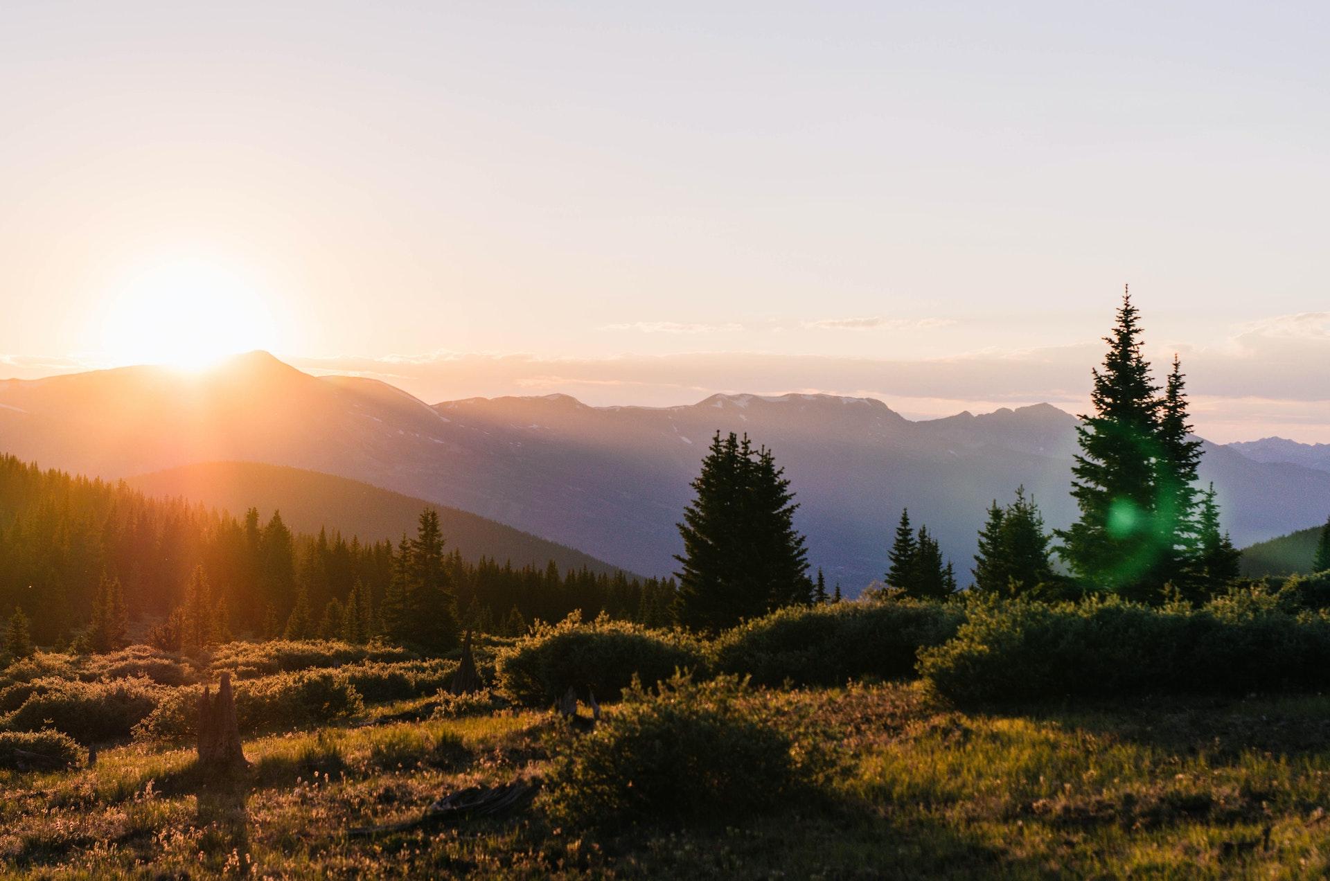 Mountain Southwest