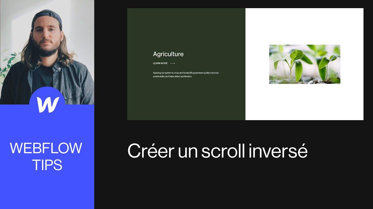 Webflow Tips / Créer un scroll inversé