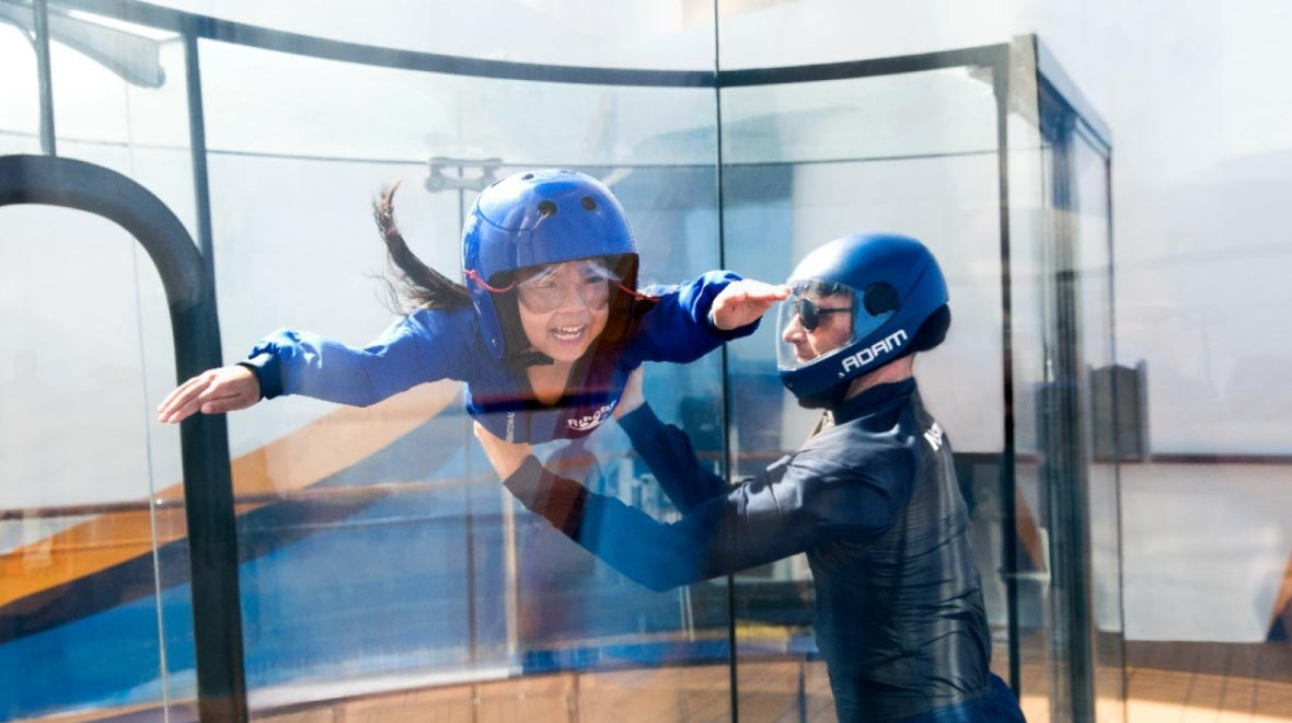 Ripcord®By Ifly® Skydiving Stimulator