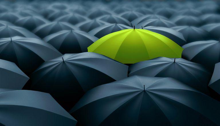 one green umbrella against all black umbrellas