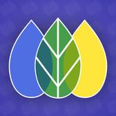 SEO manager logo