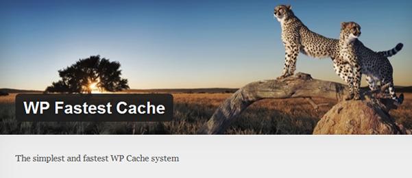 wpfastest cache logo