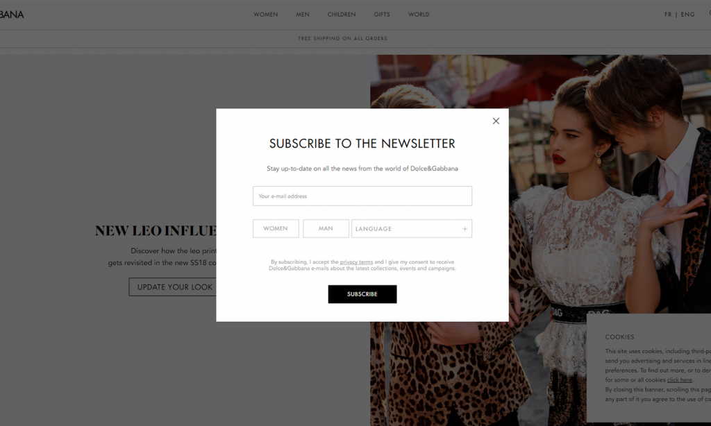 dolce and gabbana email popup