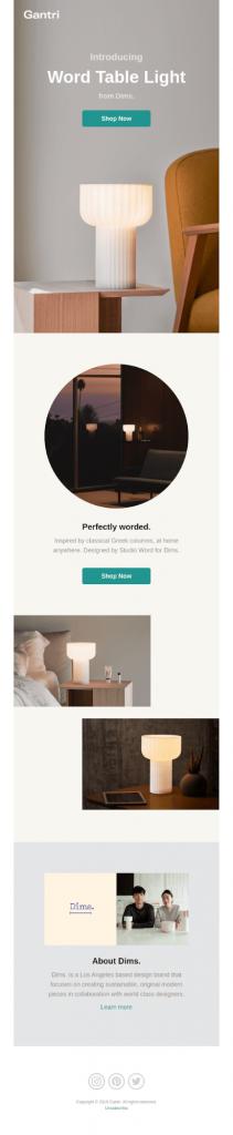gantri product email