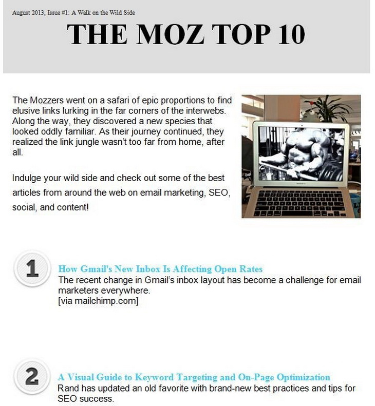 moz curated newsletter