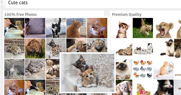 Best WordPress Plugins PhotoDropper