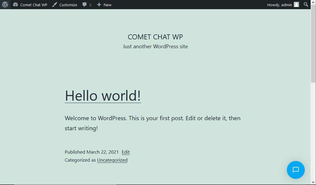Chat widget button on the WordPress Website